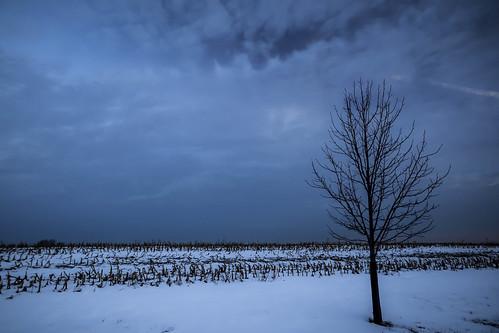 winter cold snow landscape morning ice frigid blue clouds pennsylvania