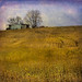 Old building on farm by dbndixie