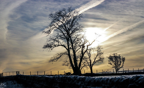 cold winter ice frost december christmas morning sun sky cloud farm field wall countryside