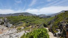 Hermanus Cliff Path