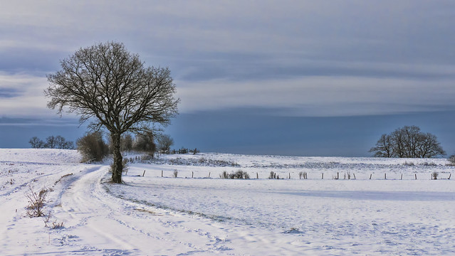 Bel hiver...