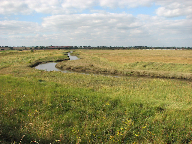South Hall Marshes, Dovercourt