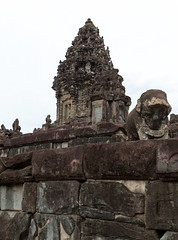 Bakong elephant