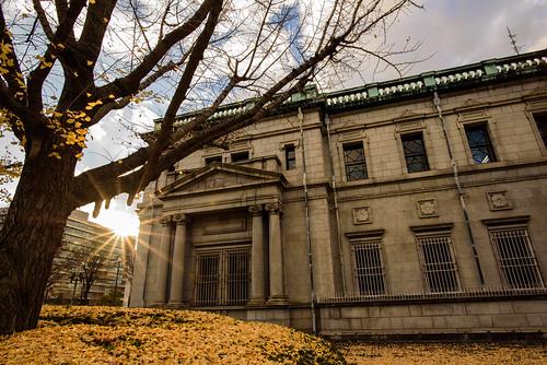 大阪市 大阪府 japan 御堂筋 イチョウ 紅葉 autumnleaves 夕景 sunset 建築物 architecture