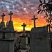 ©Vísperas del día de muertos por Angélica Robles