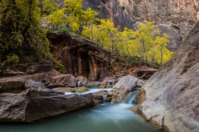 Zion National Park while hiking towards Narrows