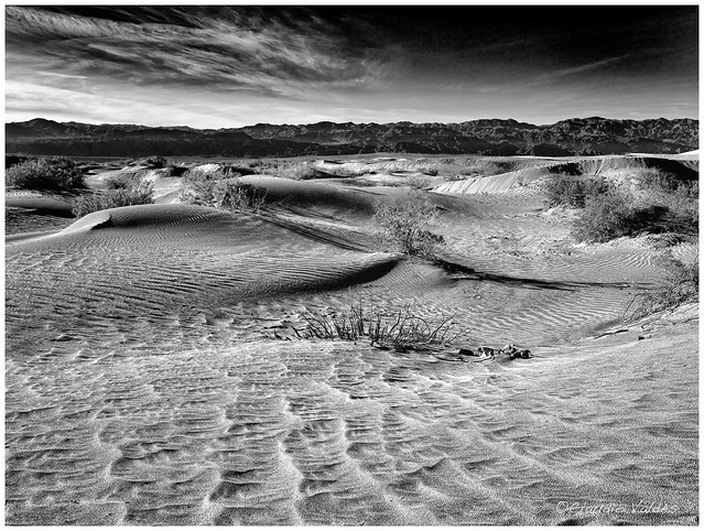 - Early at the Mesquite Sand Dunes -