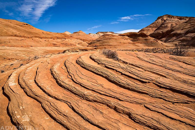 Sandstone Wandering