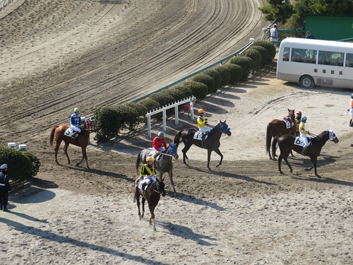 船橋競馬場のレース後に引き上げてくる騎手たち