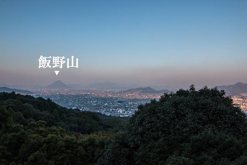 金比羅山から見た飯野山