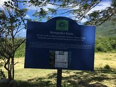 Montpelier Estate & Beach (hotel)