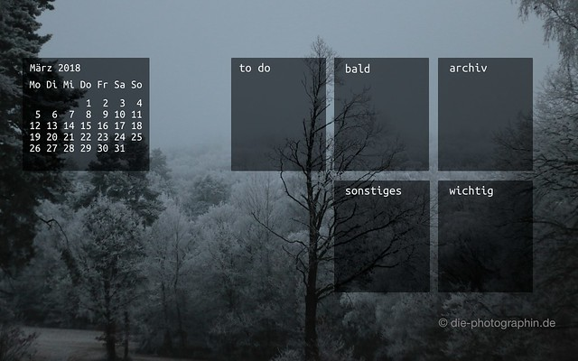 maerz2018-winterwald-wallpaperliebe-organizedDesktop-diephotographin
