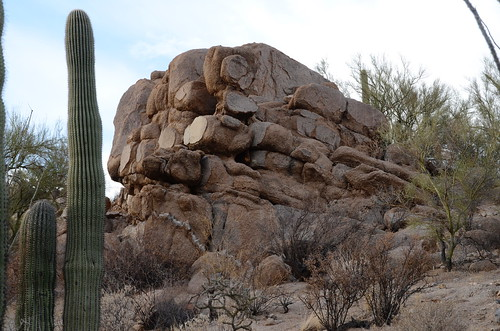 Tucson Saguaro National Forest Strange Rock | by Pierre Yeremian