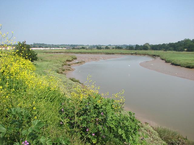 Roman River near Fingringhoe