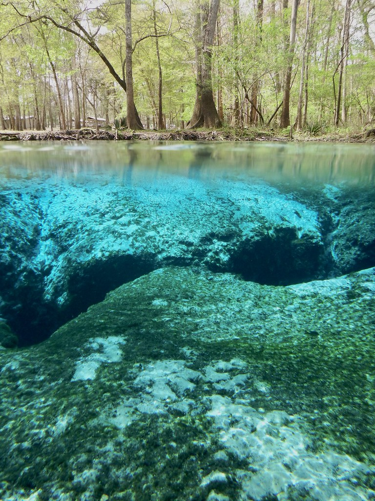 Spend an Incredible Day in the Outdoors at Ginnie Springs