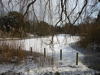 DULWICH PARK - THE FROZEN LAKE