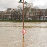 Paris Flood 2018 (Crue de la Seine à Paris)