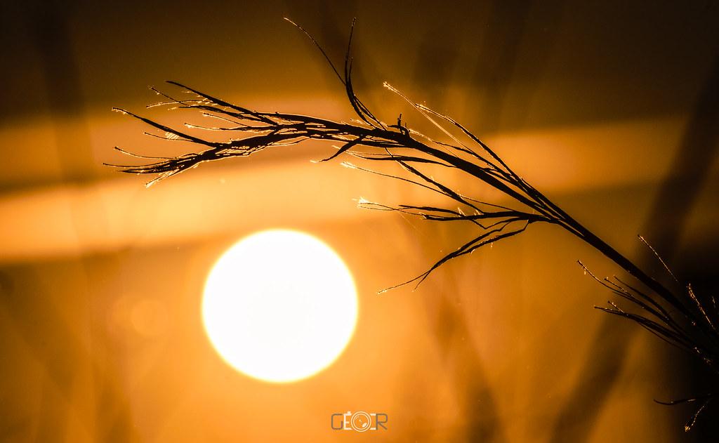 Cuando calienta el Sol...