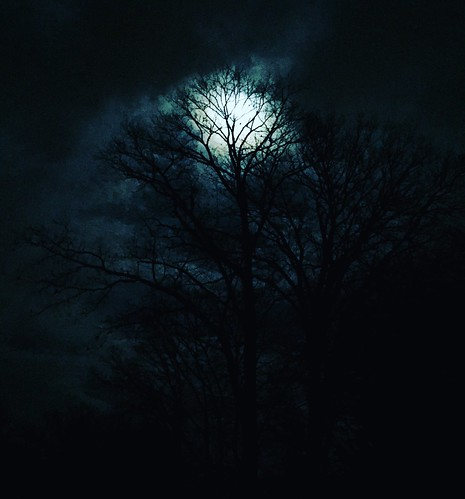 apple iphonography iphotography iphoto iphone nightsky glowing glow spooky silhouette branches tree sky night moon fullmoon