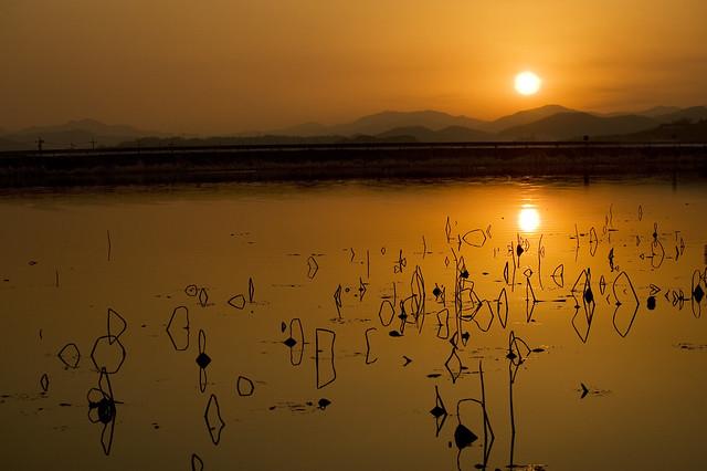 Korea:  Nature's Symmetry