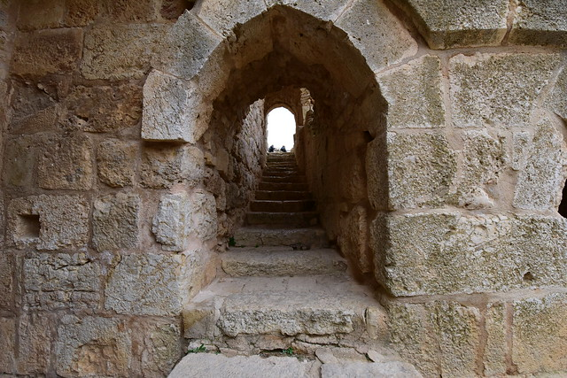 Ajloun Castle, Jordan, January 2018 178