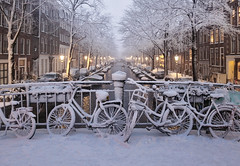 Amsterdam's winter charm shines in fairy lights