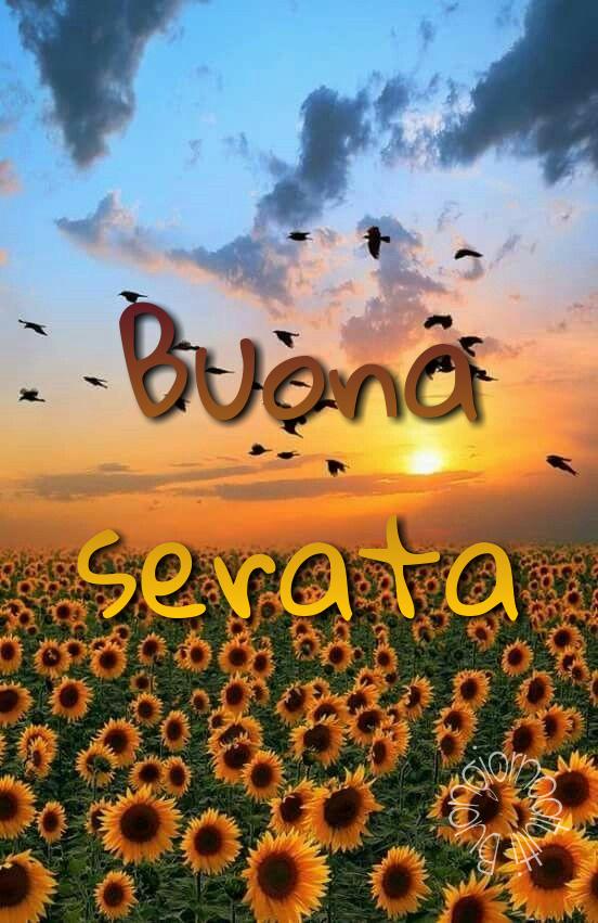 buona #serata #buonasera #atutti #buongiornoatutti #page #facebook - a  photo on Flickriver