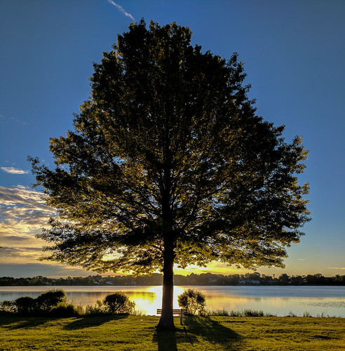 lakequannapowitt wakefield massachusetts dawn morning sunrise lake park walk 2017 unitedstates us