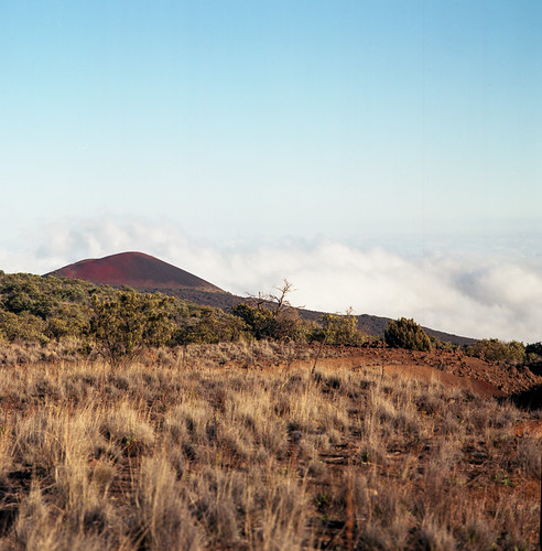 "Image titled ""On Mauna Kea."""