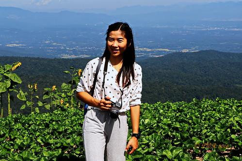"monchaem ม่อนแจ่ม maerim อแม่ริม thailand ประเทศไทย chiangmai เมืองไทย เชียงใหม่ ""canon7dmk2"" field farm ทุ่งนา ""earthasia"""