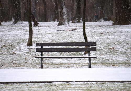 city bucharest românia sector1 aviatorilor oraș parc bucurești alpha5000 sony zăpadă iarnă winter seasons