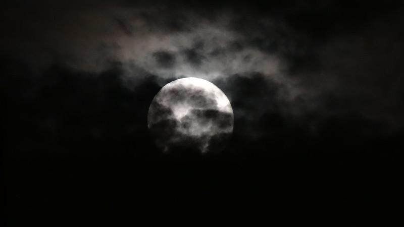 Aus irgendeinem Grund hasst die Welt Armagedon so sehr, dass wir gezwungen sind, dieses Höllenteil auf dem Mond zu ertragen. Wie auf Stichwort reißt sich Satan die Flügel auf und wir sehen die Farben und Schwänze der Satanisten auf dem Bild des Mondes, das schließlich zum Fernseher vom Tag der Toten werden sollte. Satan kämpft jetzt praktisch gegen den biblischen Teufel selbst, bis wir zum Fernsehen kommen die Teufel und wir werden es erkennenn. 00019
