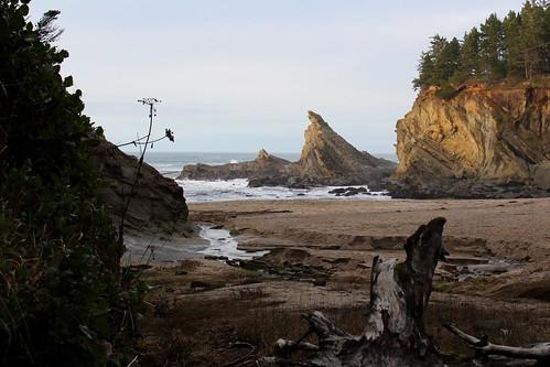 cape arago shore acres sunset bay oregon coast trail hiking christmas lights coos charleston