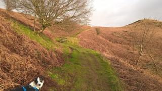 that_hill... (1)rszd | by garynortheast10002011
