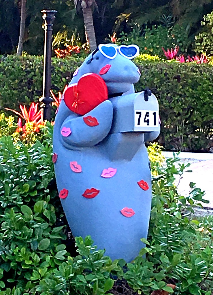 Love It Florida Style: Happy Valentine's Day From The