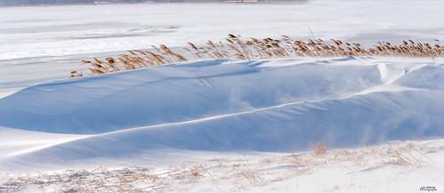 winter snow cold ice windy panarama nikon d4s 7020028