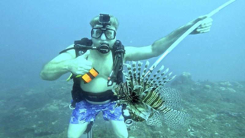 Jamaican Lionfish