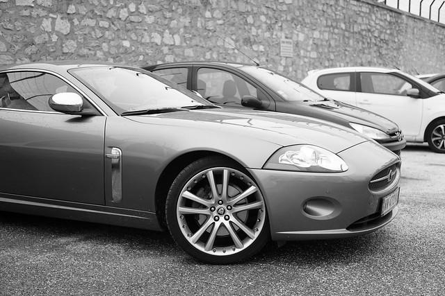 8898.Jaguar
