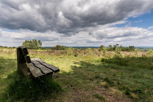 england tree clouds bench spring nikon solitude alone quiet shadows view viewpoint eastsussex ashdownforest lr6 sigma1020f456 d7100