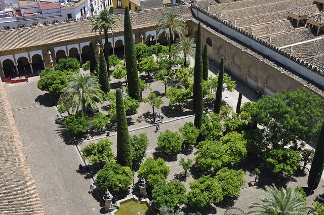 patio de los naranjos desde la torre de la mezquita-cordoba