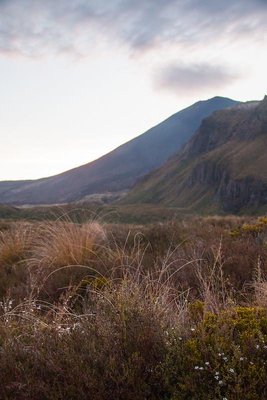 NZ-North-Tongariro-sunrise