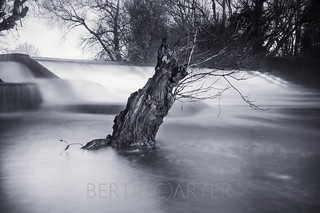 Isfield Weir