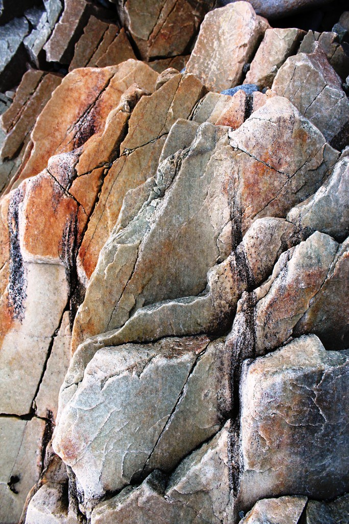 relict bedding defined by biotite rich layers in high grad