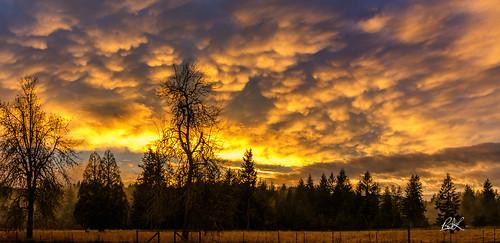 2017 tenino churchillproperty churchill sky pnw horse sunset clouds washington unitedstates us