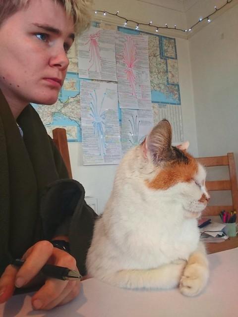 11/365: Chairman Meow