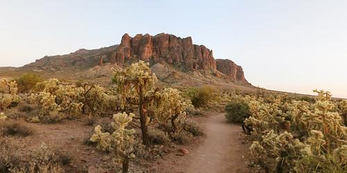 photomerge photoshop superstitionmountains arizona desert sonorandesert trail jumpingcactus chollacactus path