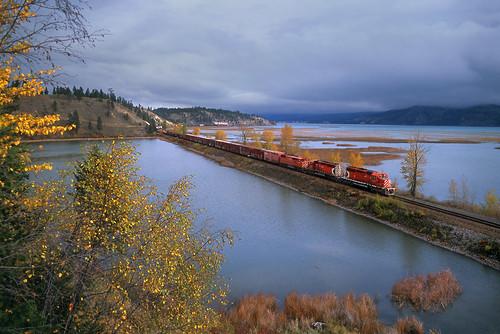 canadianpacific cp cprail wayfreight cpwindermeresub canalflats britishcolumbia locomotive railroad emd gmd sd402 6019 fallcolor autumn canada bc