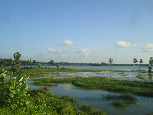 Precabura Lagoon 7.