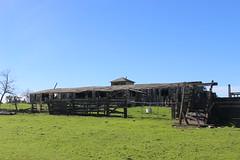 Abandoned Ranch, Denverton