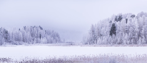 2018 jyväskylä kortesuo talvi suomi finland winter frozen snow landscape nature lake forest trees nikon d610 nikkor 200500mm panorama longexposure evening amazing europe explore world laurilehtophotography instagram outdoor